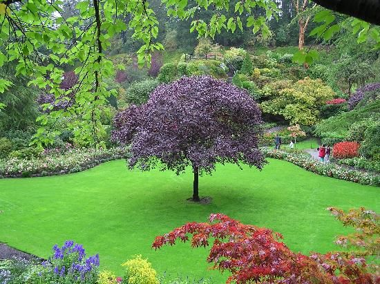 The Butchart Gardens (Central Saanich) - 2020 All You Need to Know BEFORE You Go (with Photos) - Tripadvisor