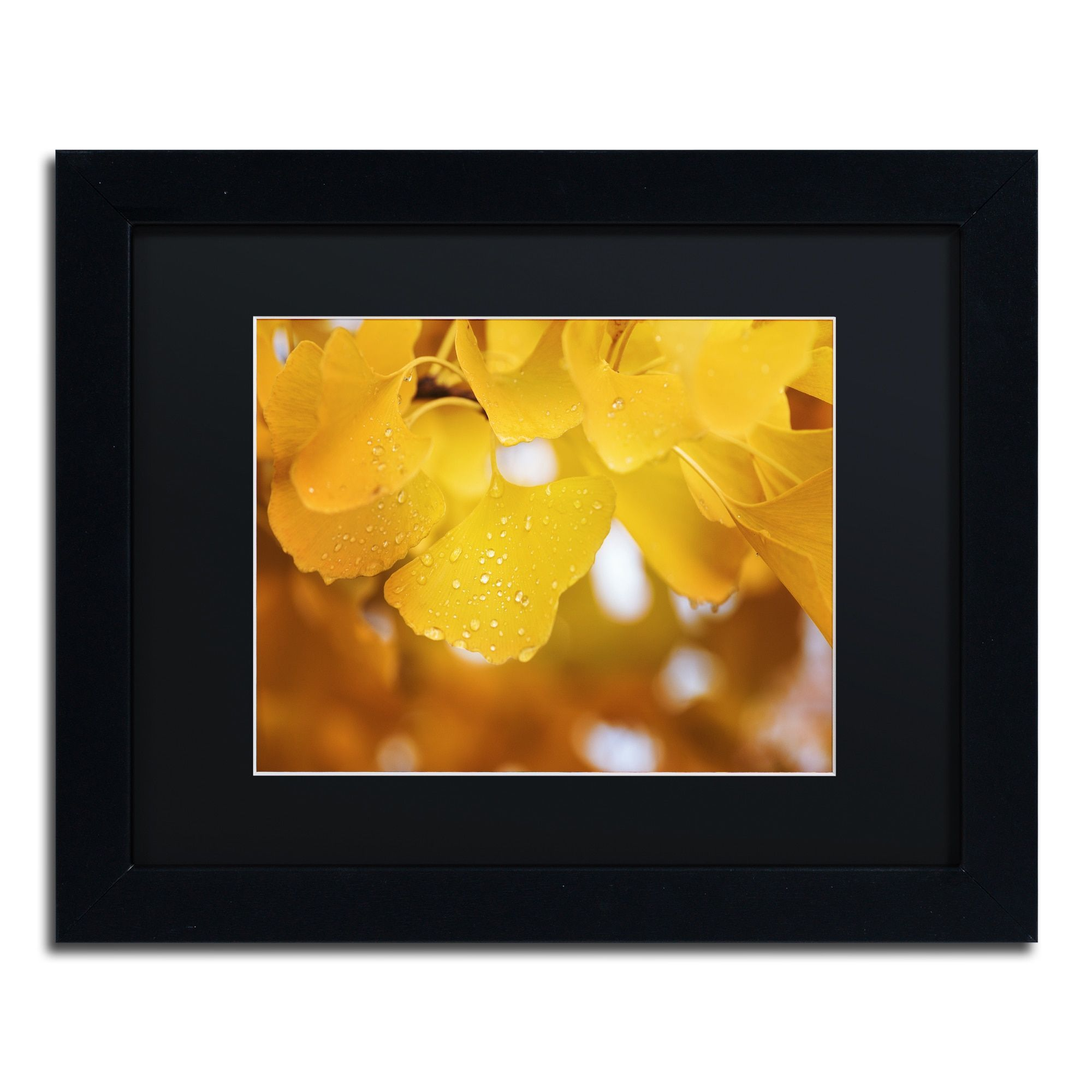 Philippe Sainte-Laudy \'Yellow Pearls\' Matted Framed Art by Trademark ...