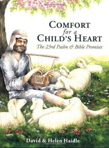Comfort for a Child's Heart by Helen Haidle http://www.amazon.com/dp/1576735699/ref=cm_sw_r_pi_dp_AtoBwb1S509Q4