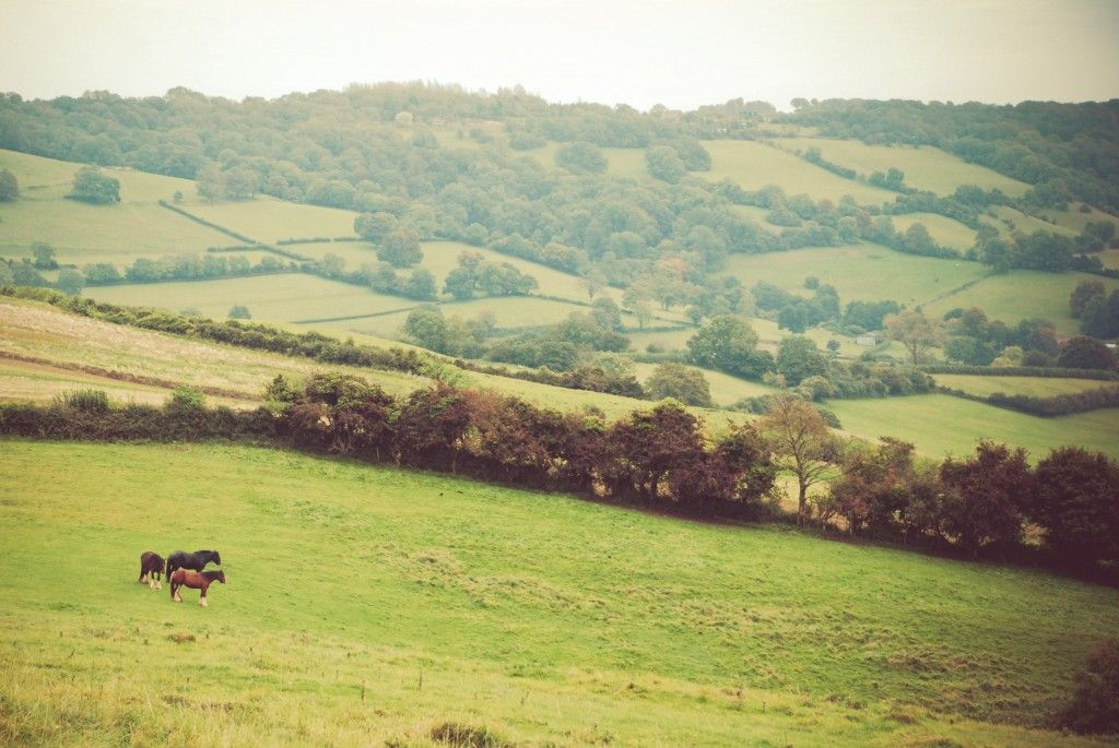 Cotswold Way, England everywhere she went - http ... on Kingdom Outdoor Living id=45224