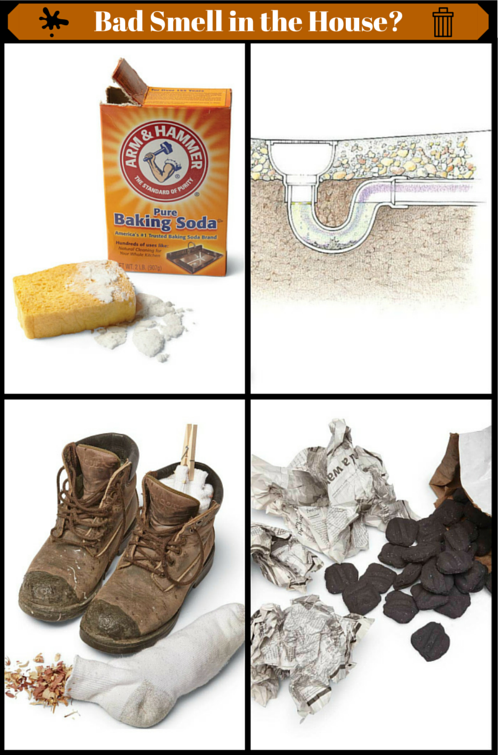 Bad Smell In The House Cleaning Hacks Clean House
