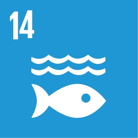 SDG 14: Life below water | UNDP
