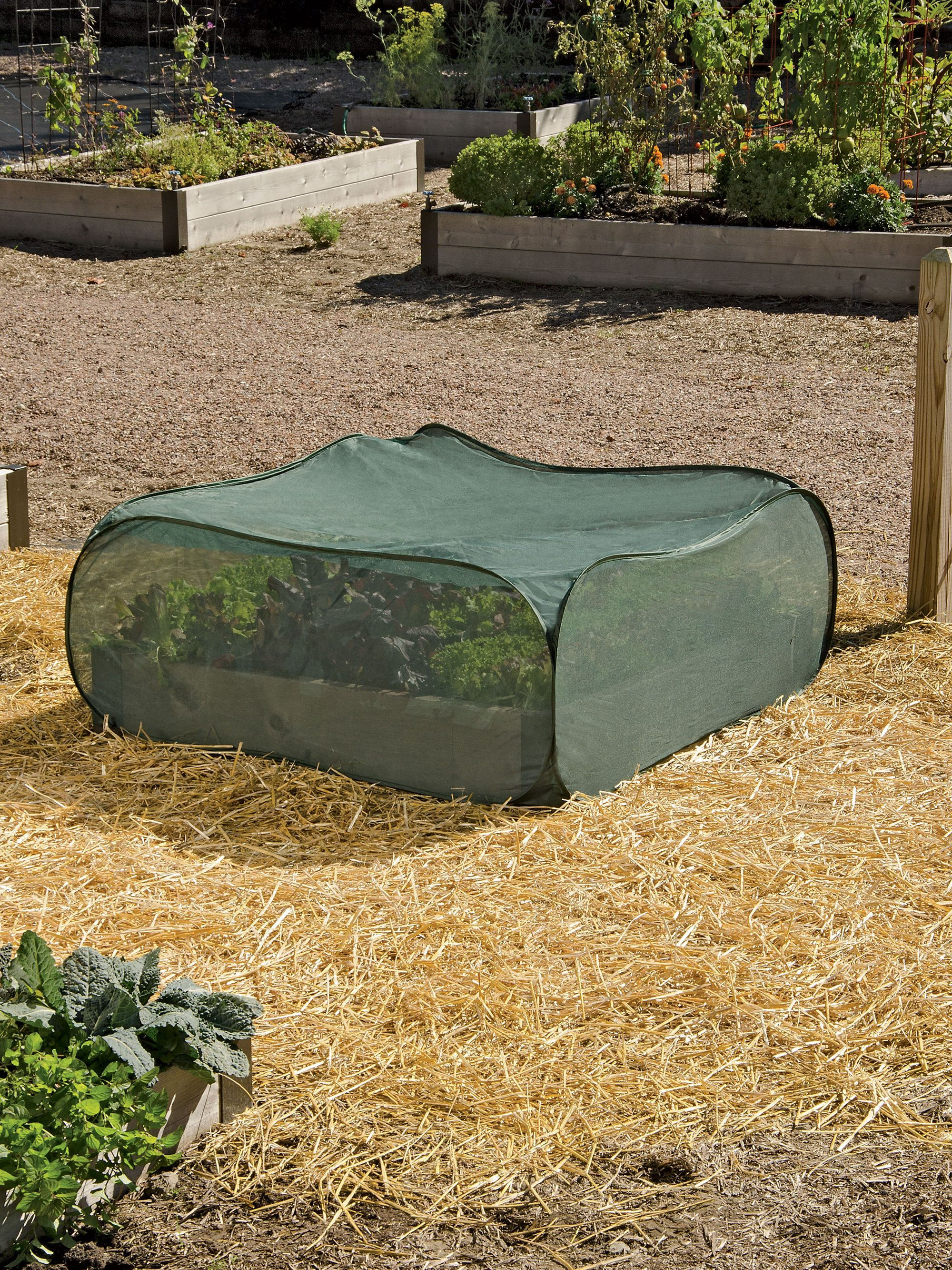 Low Pest Control Pop Up For Raised Garden Beds | Buy From Gardeneru0027s Supply