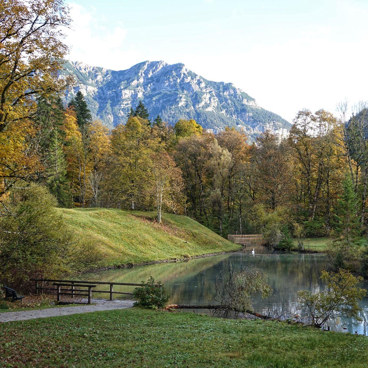 Konigsschlosser Deutschland Schloss Linderhof Schwanenweiher In 2020 Schloss Linderhof Konigsschlosser Linderhof