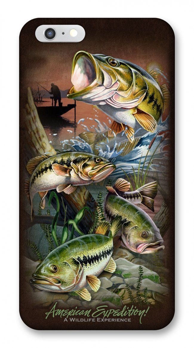 Bass Airborne Attack Painting Bass Fishing Pictures Fishing Pictures Bass Fishing