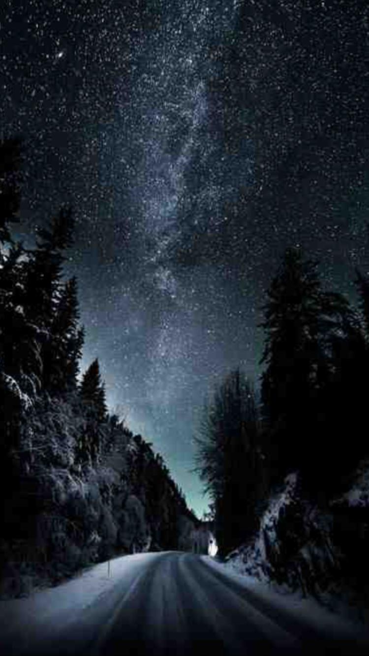 Pin by Iris Soto on Природа Dark art photography, Forest