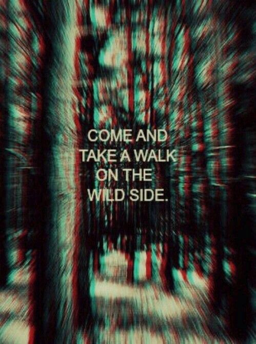 Quote, Wild, And Walk Image