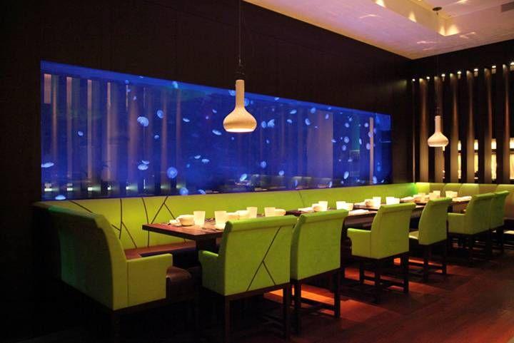 Aquarium - jellyfish tank at Steak 954 Restaurant, W Fort