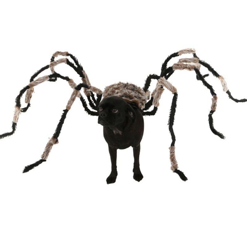Click to Buy u003cu003c Funniest Halloween Spider Decoration Dog Costume DIY Large Spider  sc 1 st  Pinterest & Click to Buy u003cu003c Funniest Halloween Spider Decoration Dog Costume DIY ...