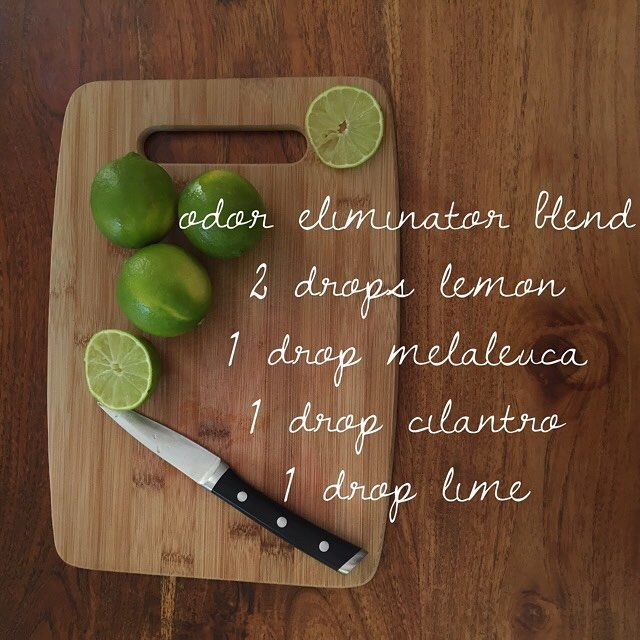 Odor Eliminator Diffuser Blend Company Coming Over Need