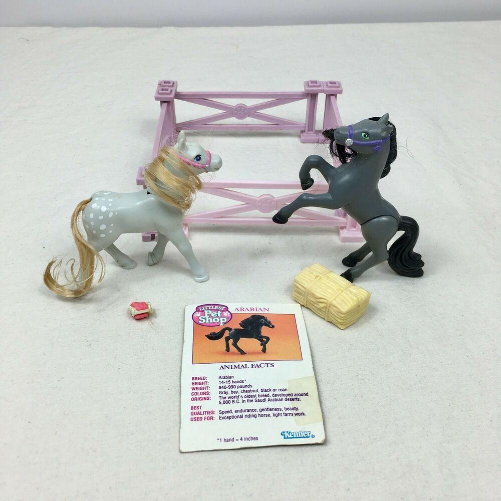 Vintage Littlest Pet Shop Zoo Playful Ponies Arabian Prancers Kenner Littlest Pet Shop Pet Shop Little Pet Shop [ 1000 x 1000 Pixel ]