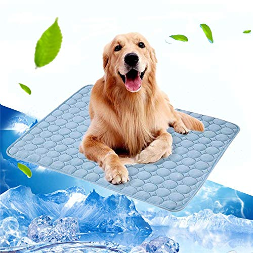 Top 10 Best Cooling Pads For Dogs Of 2019 Review Best Pet Pro Pet Cooling Mat Dog Mat Dogs