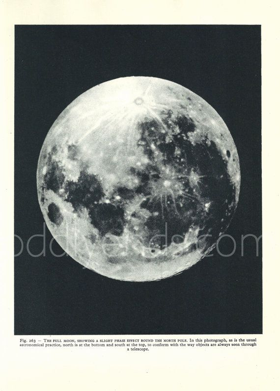 1950 S Full Moon Original Vintage Astronomy Space Print Ref263 Astronomy Full Moon Planets