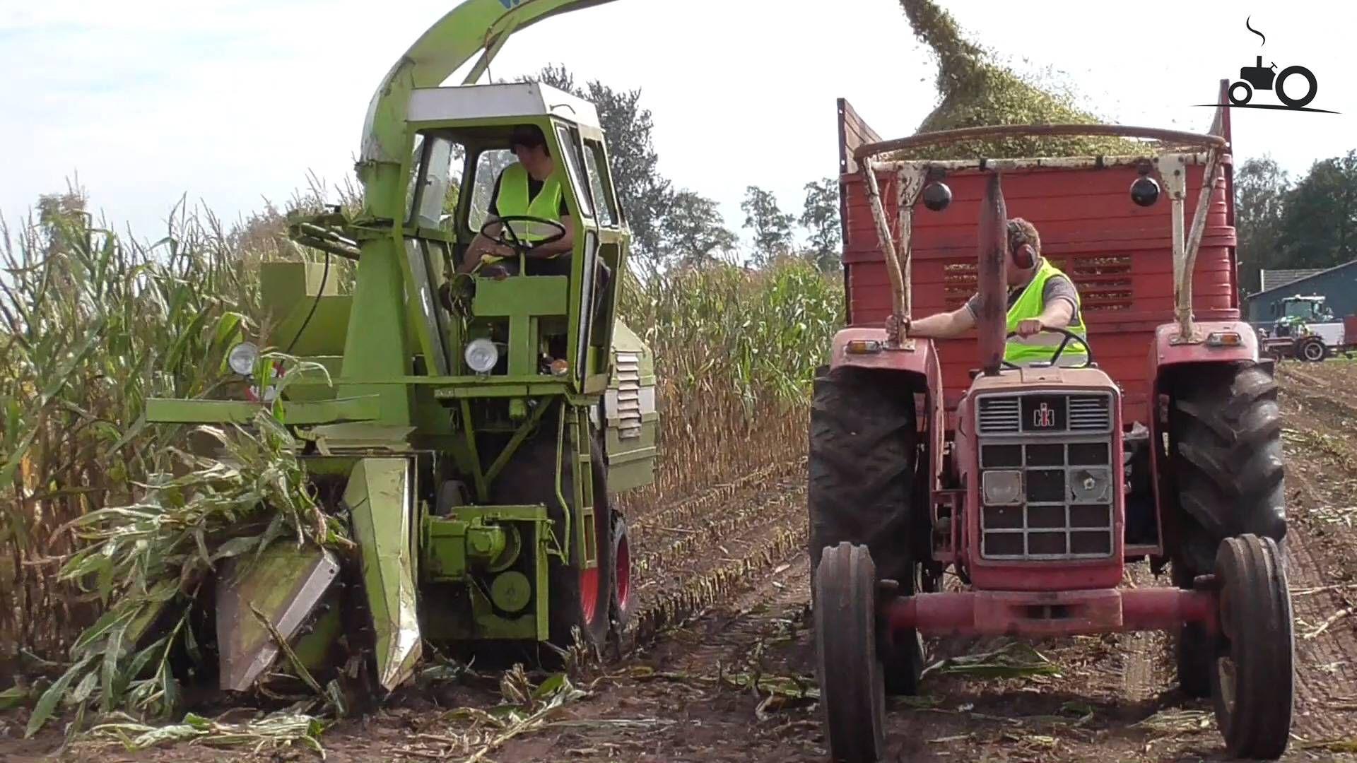 Mais Hakselen Met Een Kaweco Veldhakselaar Foto Foto S Hallen