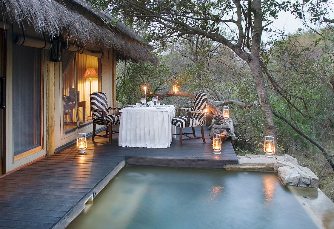 ▼ Camp Jabulani. Lodge and restaurant in a game reserve. South Africa