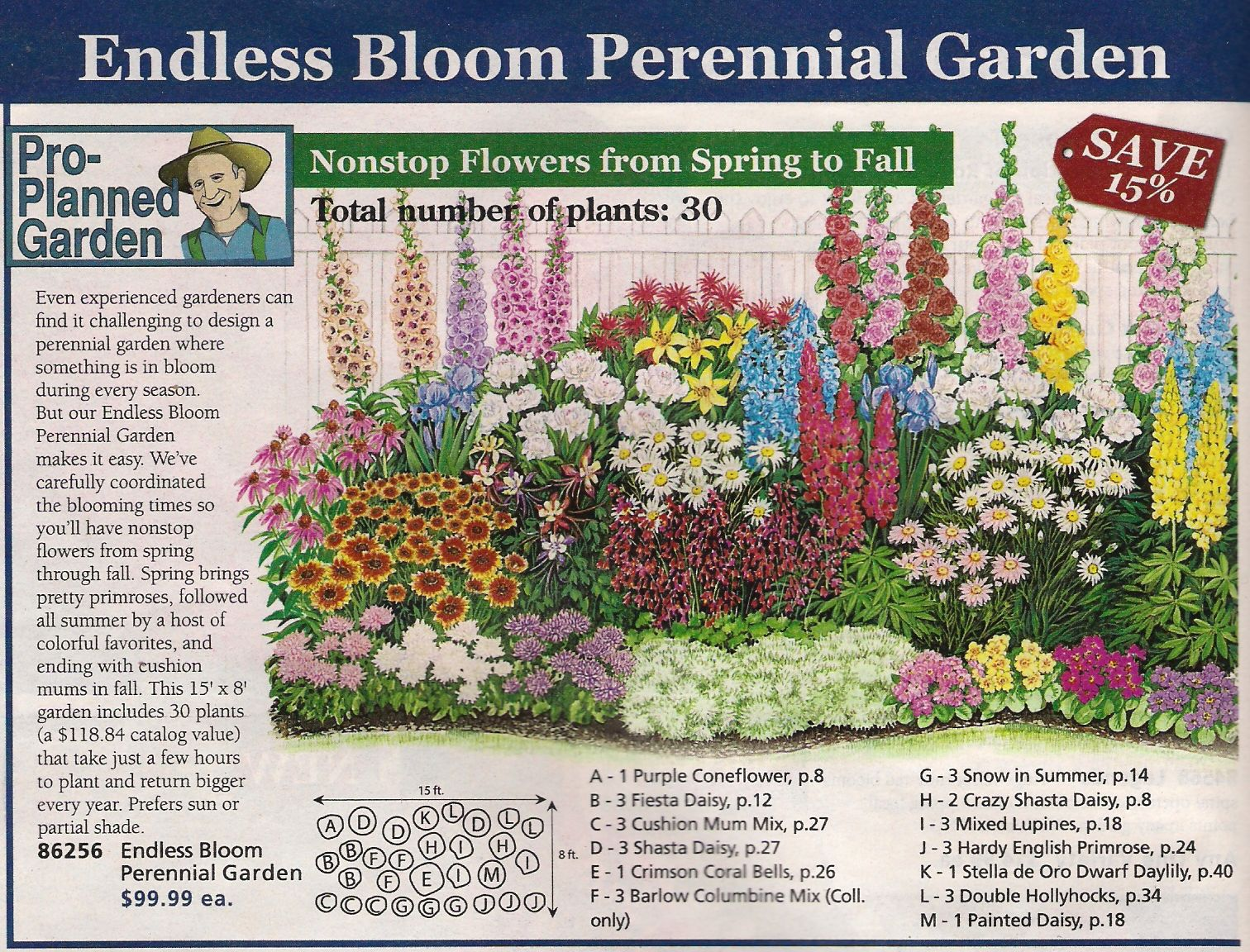 Perennial bed plan from michigan bulb co west garden for Small flower garden layout