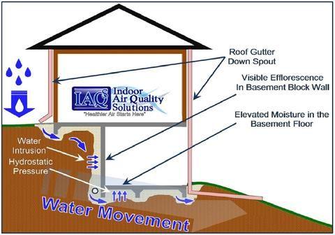 Florida Building Envelope Inspections Indoor Air Quality Solutions Iaqs Indoor Air Quality Building Indoor Air