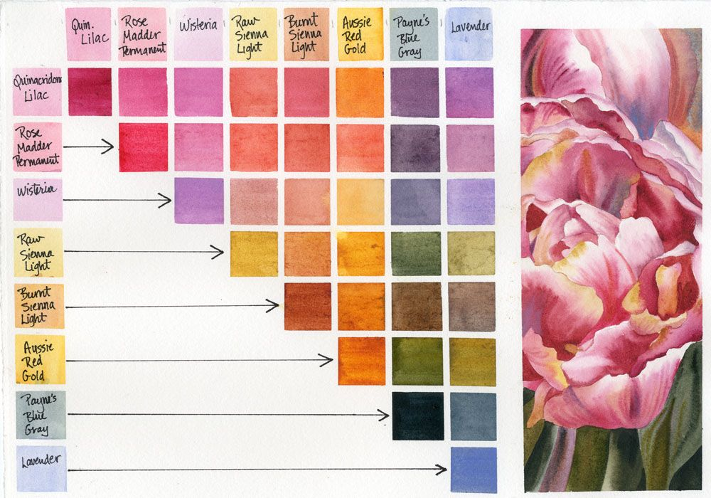 Daniel Smith Watercolor 8 New Colors Watercolour Techniques