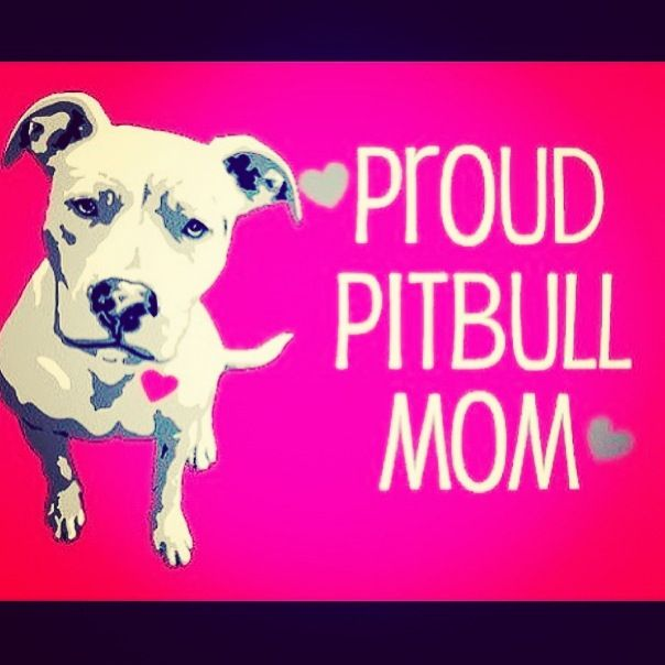 I Stand For The Pitbulls Because I Am A Proud Pitbull Mom Brianna