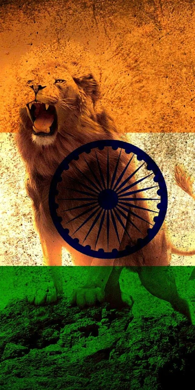 Beautiful Indian Flag Newest Wallpaper Collection In 2020 Indian Flag Wallpaper Indian Flag Indian Army Wallpapers