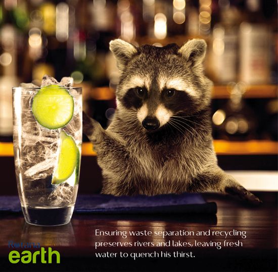 Ensuring waste separation and recycling preserves rivers and lakes, leaving fresh water to quench his thirst. #RotanaEarth