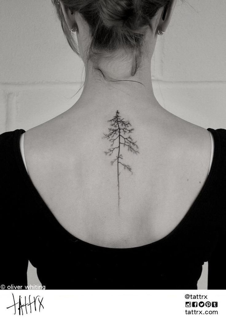 Image Result For Pine Tree Tattoo Back Of The Neck Tattoos