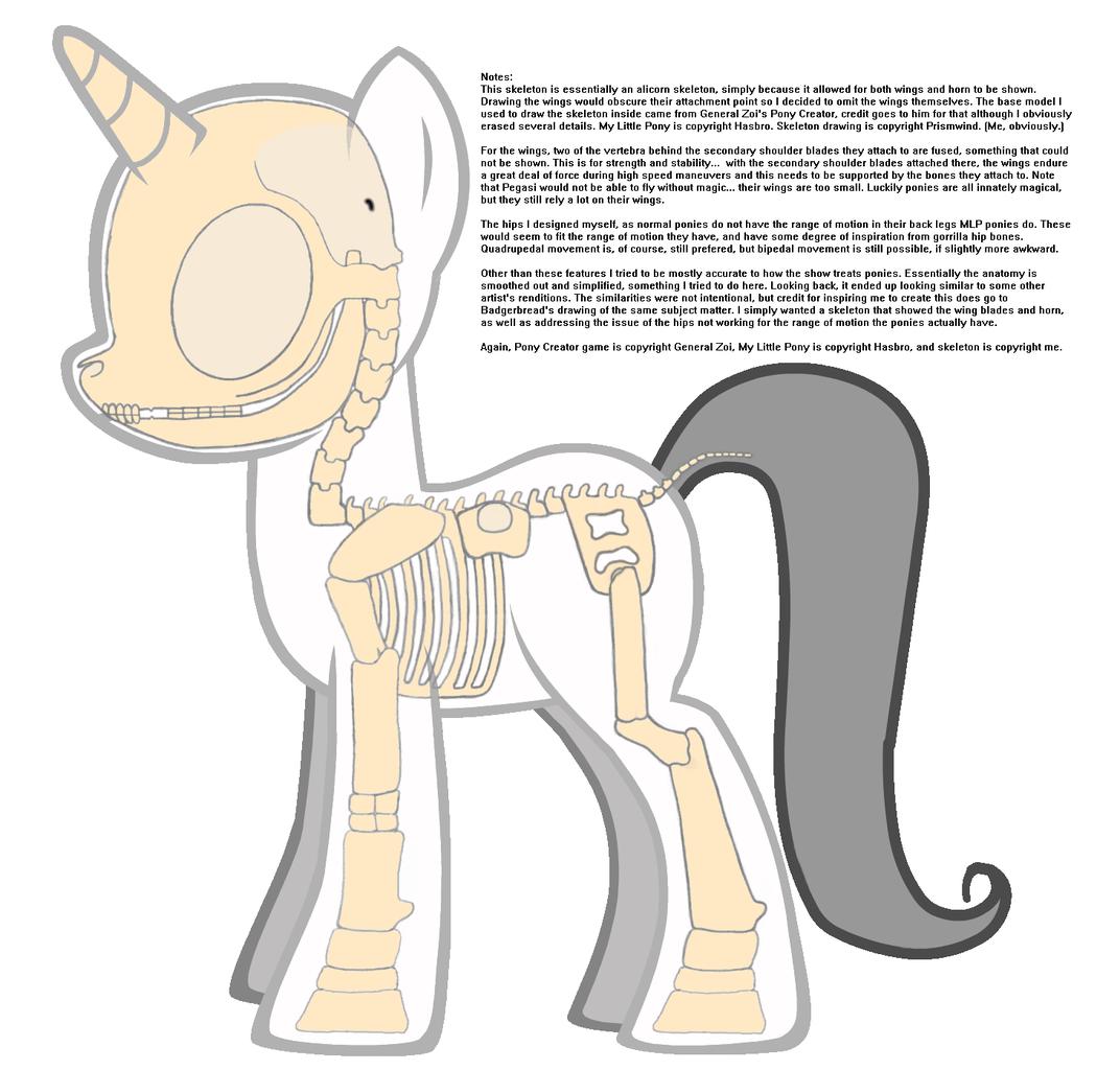 Erfreut Mein Kleines Pony Anatomie Bilder - Anatomie Von ...
