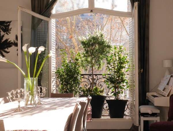 Balcón pequeño con plantas