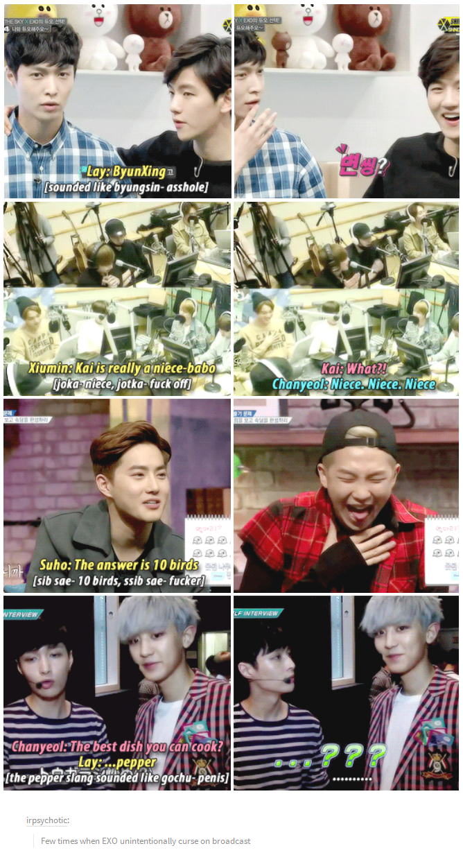 Few Times When Exo Unintentionally Curse On Broadcast Exo Funny Exo Memes Exo