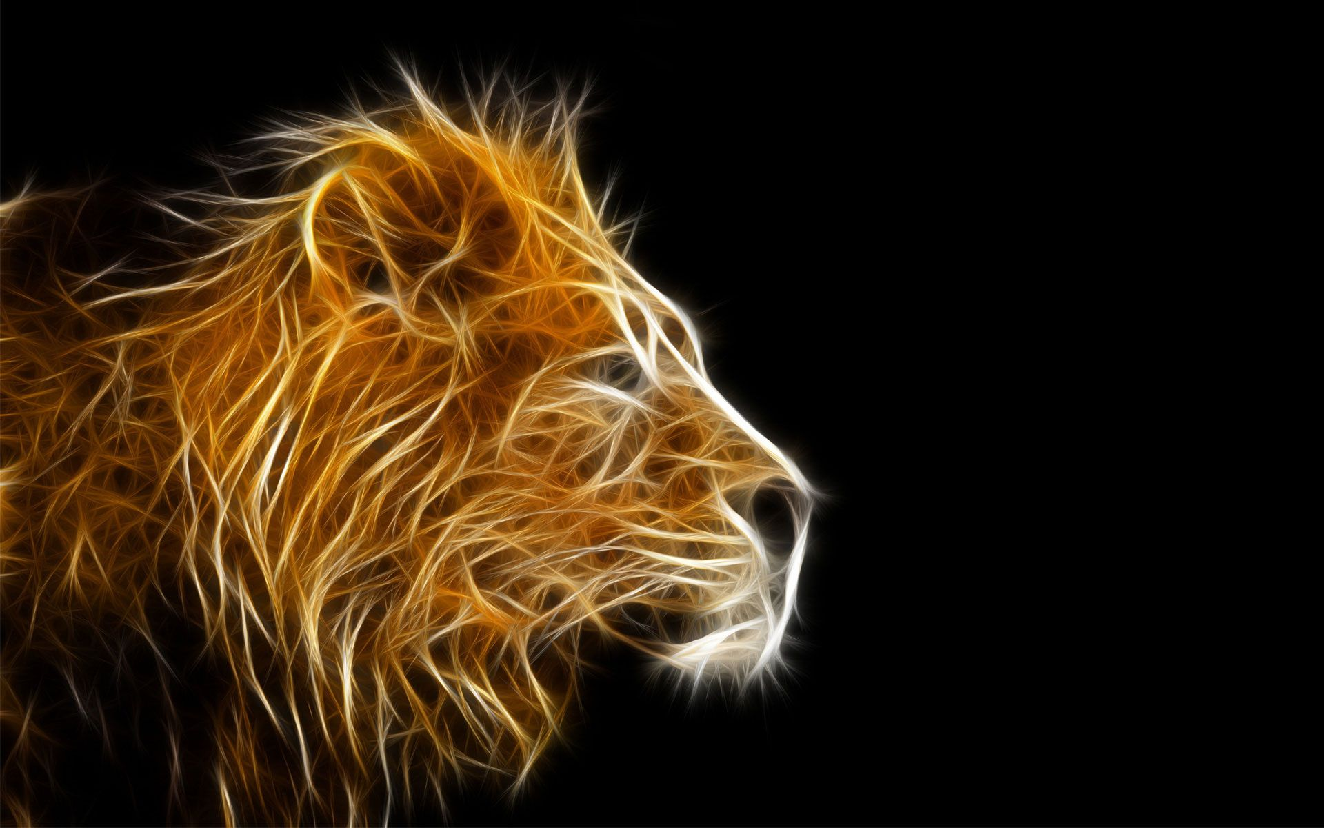Angry Lion Wallpapers Full HD for Desktop Background Wallpaper