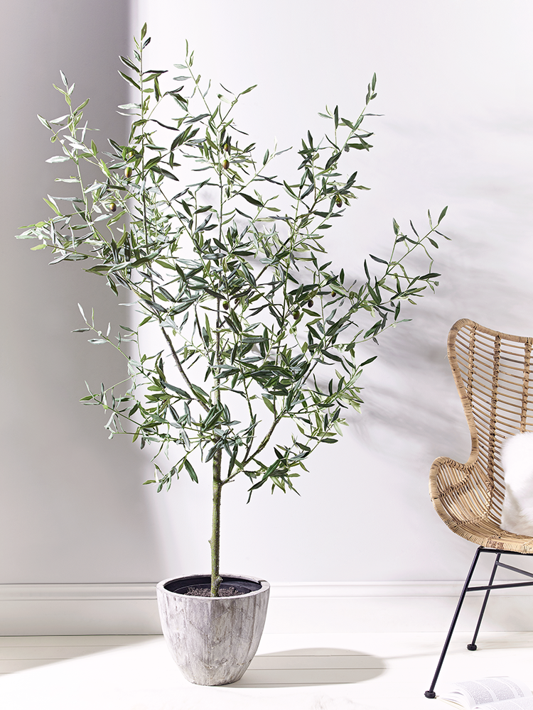 Faux Potted Olive Tree | indoor trees | Pinterest | Olive fruit ...