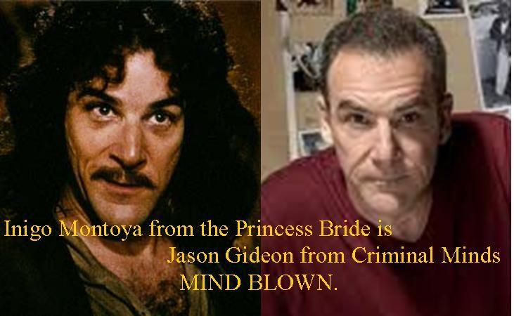 Inigo Montoya From The Princess Bride Is Jason Gideon From