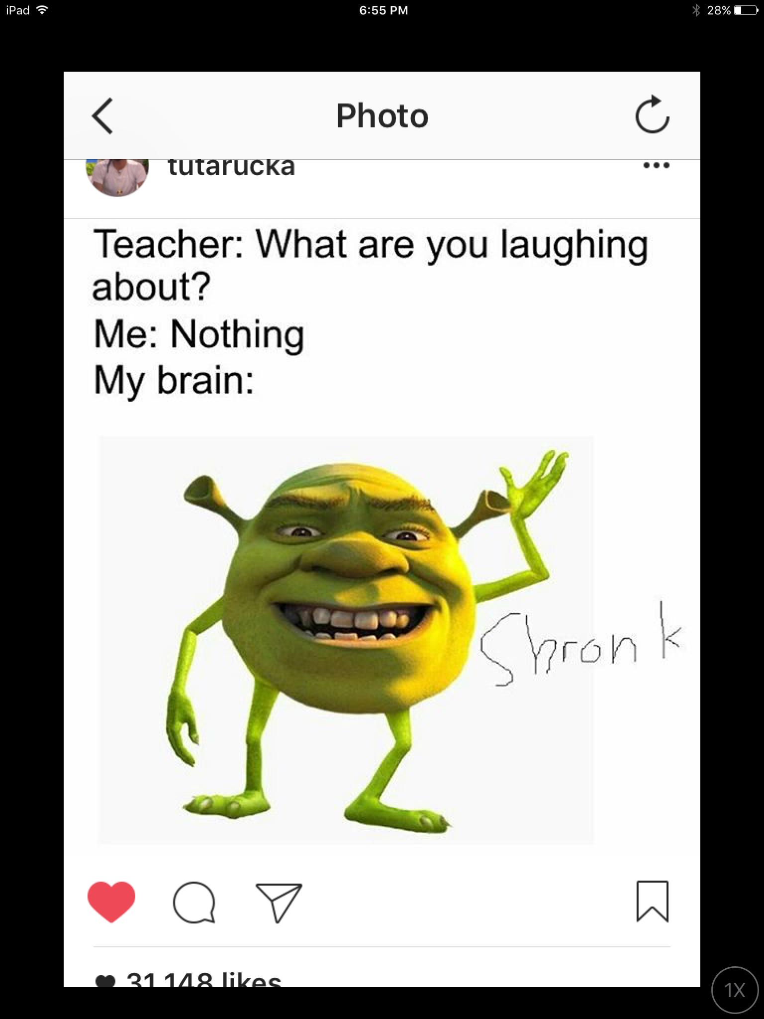 Pin By Noah Martin On Funny Really Funny Memes Shrek Memes Funny Relatable Memes