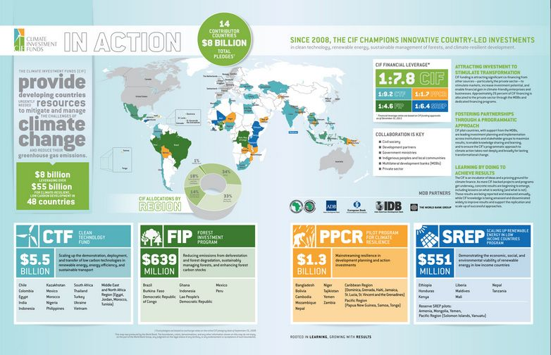 An Infographic Annual Report Nonprofit Annual Report Annual