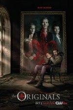 vampire diaries season 1 episode 11 1channel
