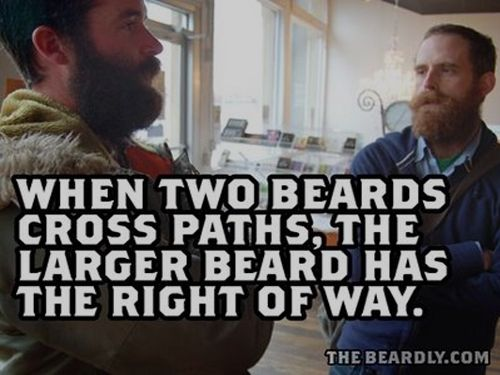 When two beards cross paths, the larger beard has the right of way.