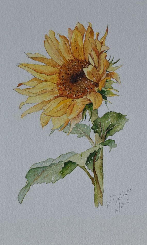 Etsy Original 125 Sunflower Watercolor Framed Original Art