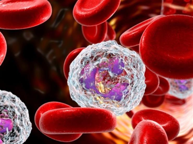 ضعف النسيج الضام ينذر بمشكلة صحية كيف يمكن تقويمه In 2020 Spice Mixes Cell Wall High Carb Foods