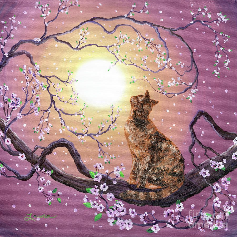 Cherry Blossom Waltz By Laura Iverson Cherry Blossom Painting Art Cat Painting