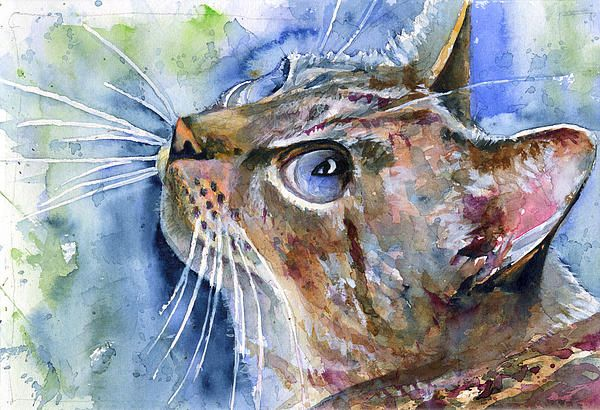 Avalon Four by John D Benson. Finalist in the Fine Art America's 'Characterful Felines' competition