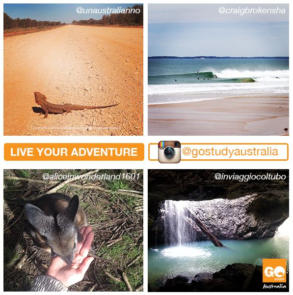 Live your adventure! -Australia -
