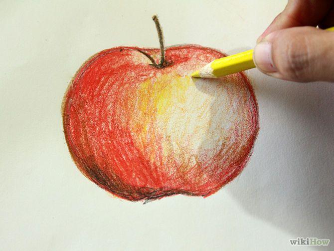 Carnation Flower Real Time Beginner Watercolor Pencil Tutorial