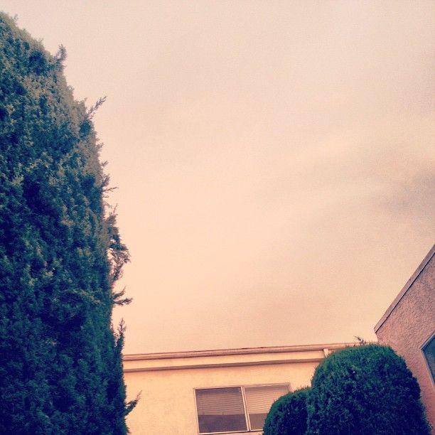 my place | Santa Monica, CA   @ mary johanna seibert