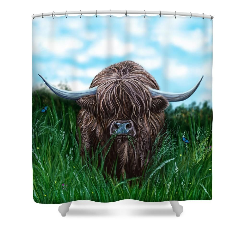 Scottish Highland Cow Shower Curtain For Sale By David Brodie
