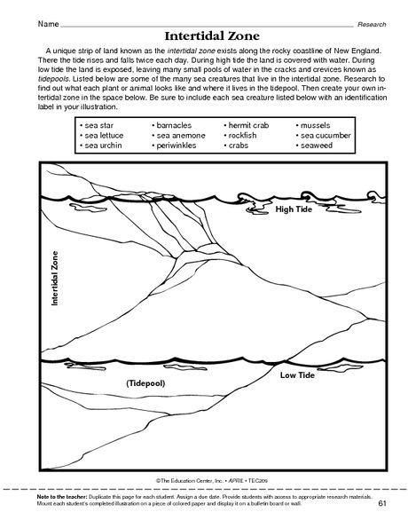 Intertidal zone , Ocean, ................ Mailbox | Oceans ...