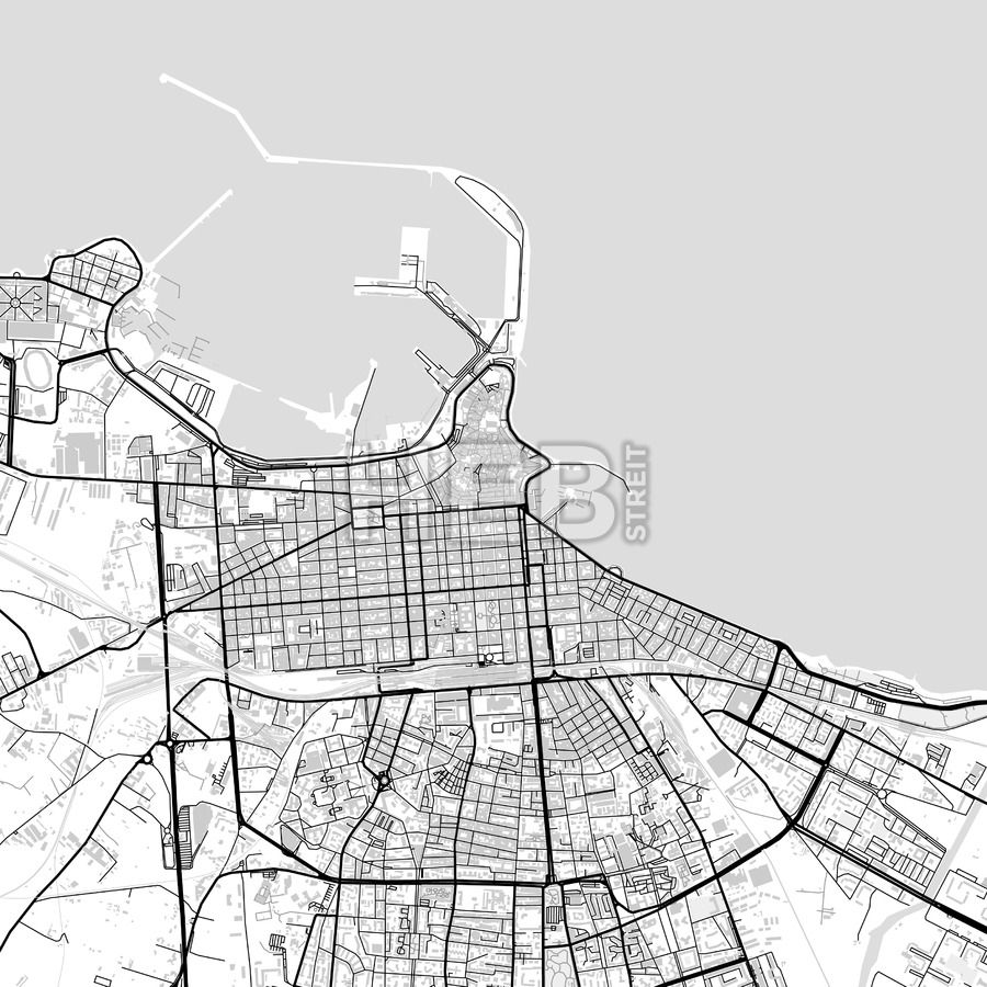 Downtown vector map of Bari