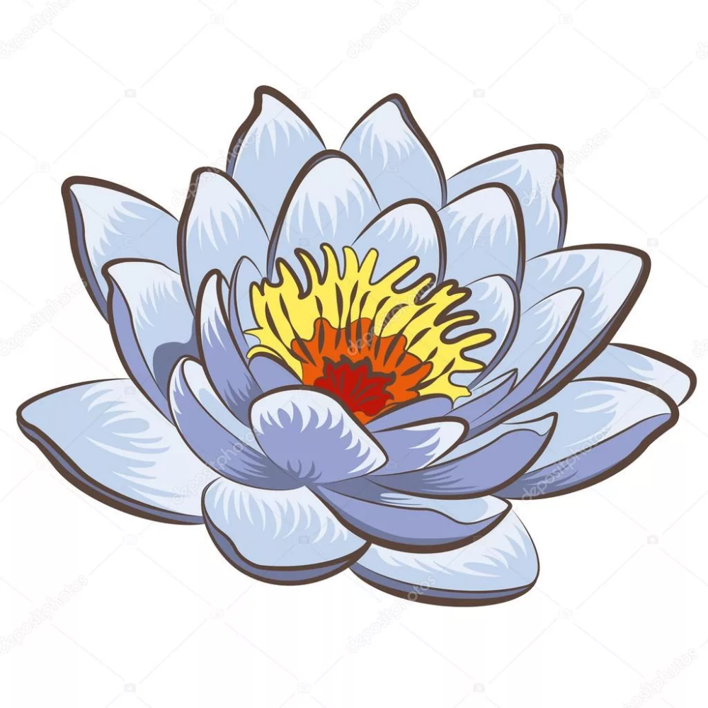 Pin on lotus flower