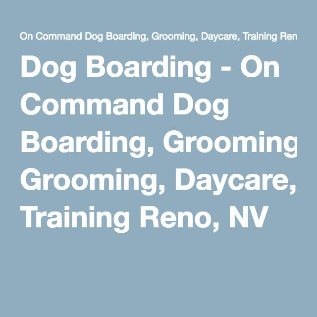 Dog Boarding On Command Dog Boarding Grooming Daycare