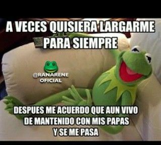 Pin By Laura Gil On Frases Humor Spanish Humor Memes