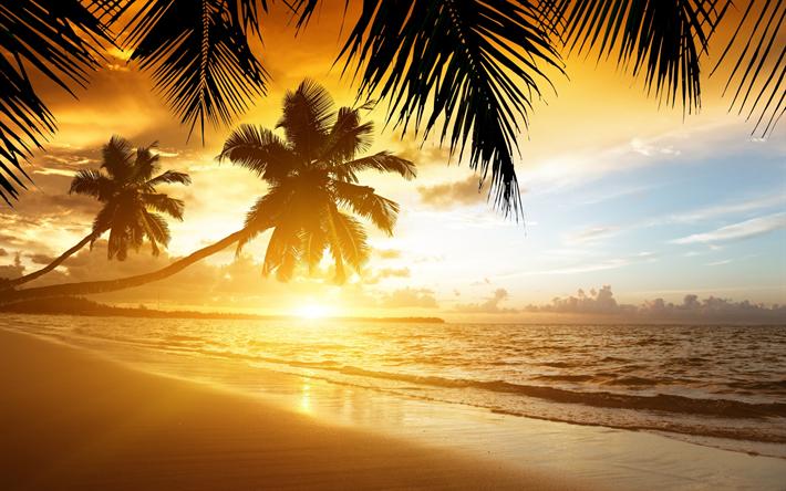 Download Wallpapers Tropical Islands Sunset Ocean Palms Waves Beach Besthqwallpapers Com Puesta De Sol Playa Salida Del Sol En La Playa Papel Mural De Playa